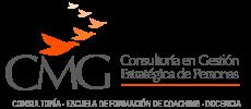 CMG Consultores Logo